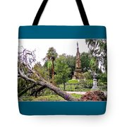 The Hurricane And The Confederate Monuments Tote Bag