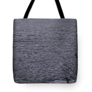 The Ice Float Tote Bag