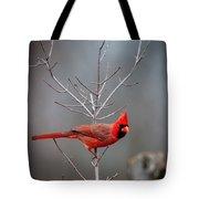 The Inquiring Cardinal Tote Bag