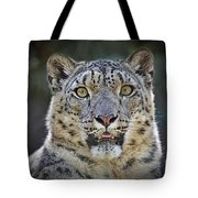 The Intense Stare Of A Snow Leopard Tote Bag