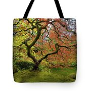 The Japanese Maple Tree In Spring Tote Bag