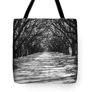 Live Oaks Lane With Shadows - Black And White Tote Bag