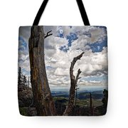 The Journey To Harney Peak Tote Bag