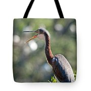 The Joy Of Living Tote Bag