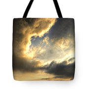 The King Of His Domain Tote Bag by Meirion Matthias