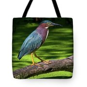The King Of The Log.... Tote Bag