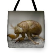 The Larval Stage Of A Locust Tote Bag