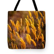 The Last Flowers Of Winter  Tote Bag