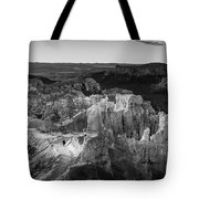 The Last Man On Earth Tote Bag
