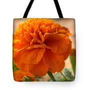 The Last Marigold Tote Bag