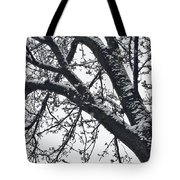 The Last Snow Fall Tote Bag