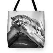 The Lazy Being Tote Bag