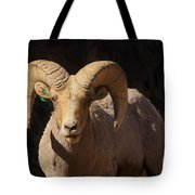 The Leader Of The Pack Tote Bag