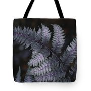 The Leaf Of A Japanese Painted Fern Tote Bag