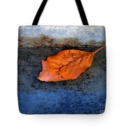 The Leaf On The Stairs Tote Bag