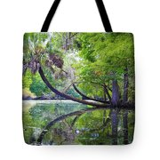 The Leaning Palm Tote Bag