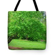 The Leaning Tree Tote Bag