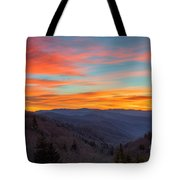 The Leaves Are Gone But The Beauty Is There. Tote Bag
