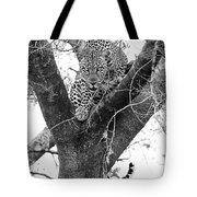 The Leopard's Stare Tote Bag