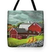 The Light After The Storm Tote Bag