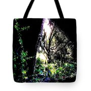 The Light At The End Of The Triangle Tote Bag by Eikoni Images