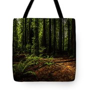 The Light In The Forest No. 2 Tote Bag