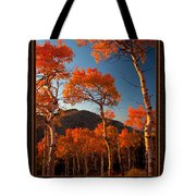 The Light Is Good Tote Bag