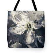 The Light Of Spring Petals Tote Bag