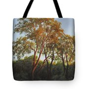 The Light Of Summer Sunset Tote Bag