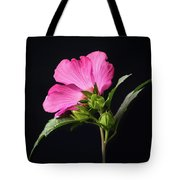 The Light Rose Of Sharon 2017 Square Tote Bag