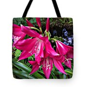 The Lilies Of Summer Tote Bag