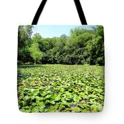 The Lily Pond #1 Tote Bag