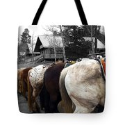 The Line Up Tote Bag by Barry C Donovan