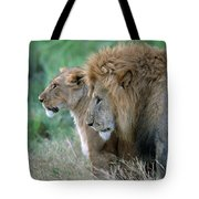 The Lion And His Lioness Tote Bag