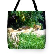 The Lion Awakes Tote Bag