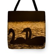 The Liquid Gold Tote Bag