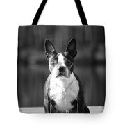 The Little Beast Tote Bag