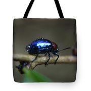 The Little Bug In The Rain Tote Bag