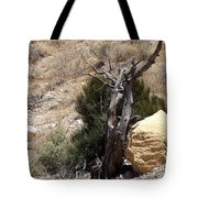 The Living And The Dead Tote Bag