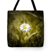 The Lonely Daisy Tote Bag