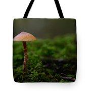The Lonely Mushroom Tote Bag