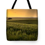 The Lonely Tree, Israel Landscape Tote Bag