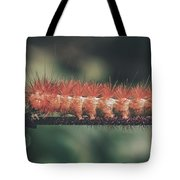 The Long Stride Tote Bag