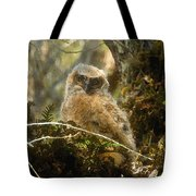The Look Of Innocence Tote Bag