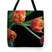 The Look Out Tote Bag by Tracy Hall