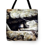 The Lookout Lynx Tote Bag