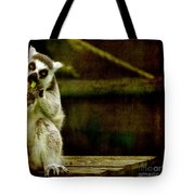 The Lori Tote Bag