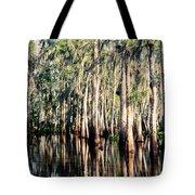 The Louisiana Bayou Tote Bag