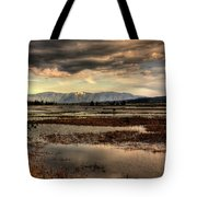 The Lower Pack River Idaho Tote Bag