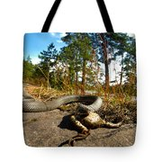 The Lunch Of Grass Snake Tote Bag